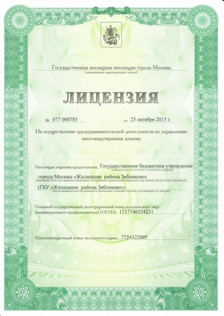 Лицензия МКД